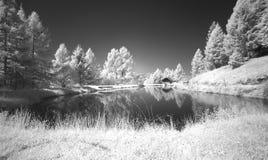 Mode infrarouge d'étang paisible reculé photo libre de droits
