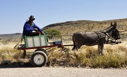 Mode Of Transport, Cart, Pack Animal, Chariot Stock Images