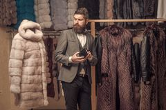 Mode und Schönheit, Winter, Pelz stockbilder