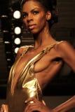 Mode-Wochen-Feiern auf der ganzen Welt Stockbild