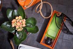 Modedame eingestellt mit Duft und Blume um schwarzen Hintergrund stockfoto