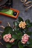 Modedame eingestellt mit Duft und inländischen Blumen um schwarze Hintergründe lizenzfreies stockfoto