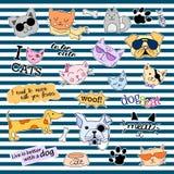 Modefleckenausweise Katzen und Hunde eingestellt Aufkleber, Stifte, bessert handgeschriebene Anmerkungssammlung in der komischen  Lizenzfreie Stockbilder