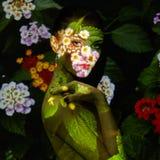 Modekunstporträt von Schönheiten Stockbilder