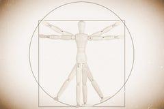Model als mens Vitruvian Royalty-vrije Stock Foto