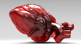 Model of artificial human heart. Model of artificial the human heart Royalty Free Stock Photography