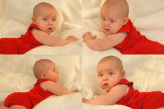 Model baby - red collage Royalty Free Stock Photo