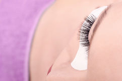 Model with beautiful lashes posing Stock Image
