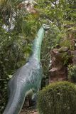 Model of Brontosaurus. Brontosaurus is a genus of gigantic quadruped sauropod dinosaurs. Although the type species, B. excelsus, had long been considered a stock photos
