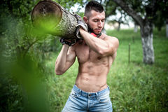 Model carrying and cutting wood logs for firewood Stock Photo