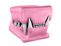Model of cat teeth cast. Royalty Free Stock Photography