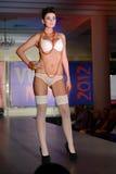 Model on catwalk Stock Photos