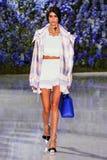 Model chodzi pas startowego podczas Christian Dior przedstawienia Fotografia Royalty Free