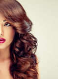 Model with dense, curly hair. Half-face portrait. royalty free stock images