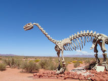 The model of a dinosaur skeleton in the sand stock image