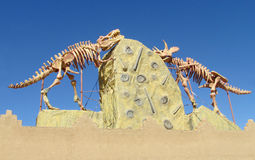 The model of a dinosaur skeleton Royalty Free Stock Photography