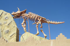 The model of a dinosaur skeleton Stock Photos