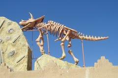 The model of a dinosaur skeleton Stock Photos