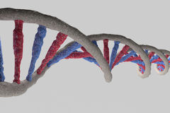 Model of DNA structure Stock Images