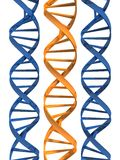 Model of double helix. 3d rendered illustration of three double helix Stock Photo