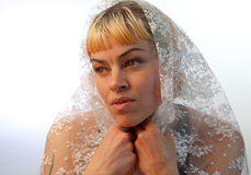 Model With Draped Veil Royalty Free Stock Photo