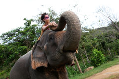 Model and elephant. Royalty Free Stock Photos