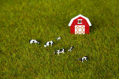 Model Farm Royalty Free Stock Photography