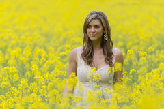 Model In Field Of Flowers Stock Photos
