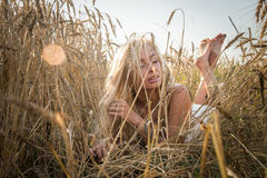 Model in the field Royalty Free Stock Image