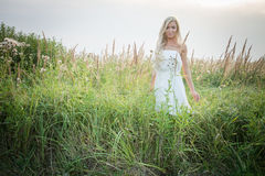 Model in the field Royalty Free Stock Photo