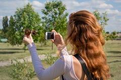 Model fotograferend met smartphone Royalty-vrije Stock Afbeelding