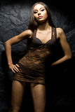 Model girl in brown short transparent dress Royalty Free Stock Photography