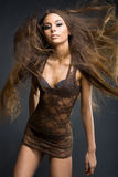 Model girl in brown transparent dress Stock Images