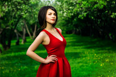 Model girl in red dress Stock Image