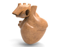 Model of  heart Stock Image