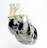 Model of  heart. Model of artificial human heart Stock Photos