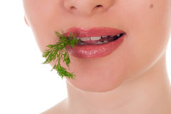 Model holding a batch of green dill in her teeth Royalty Free Stock Images