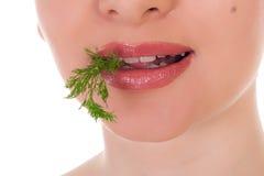 Model holding een partij van groene dille in haar tanden Royalty-vrije Stock Afbeeldingen
