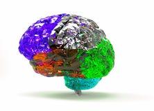 Model of human brain i. Model of human brain  on white background Stock Image