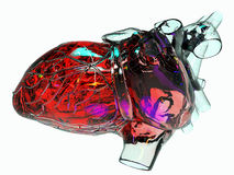 Model of  human heart. Model of artificial human heart Royalty Free Stock Photo