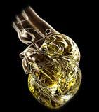 Model of human heart Stock Image