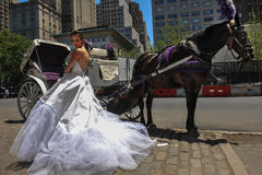 Model Kalyn Hemphill poses in front of horse carriage Stock Photos
