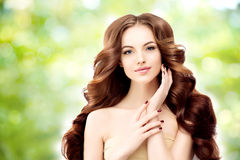 Model with long wavy hair. Waves Curls Hairstyle. Hair Salon. Up Stock Image