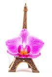 Model mała wieża eifla z różowym kwiatem Fotografia Royalty Free
