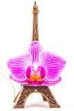 Model mała wieża eifla z różowym kwiatem Obraz Stock