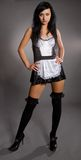 Model in maid clothes Stock Image
