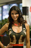 Model Micaela Schaefer Royalty Free Stock Photos