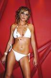 model nätt sexigt för bikini Arkivbilder