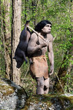 Model of Neanderthal Hunter Carrying Pig. Model of Neanderthal Hunter, an Extinct Species of Human, Carrying Pig Over Shoulder Outdoors in Theme Park royalty free stock image