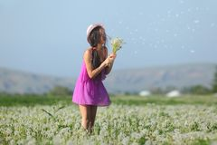 Model in a pink dress on a dandelion field in a straw hat Stock Photography